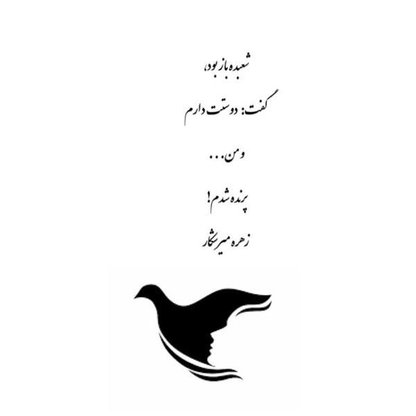 هنر شعر و داستان محفل شعر و داستان زهره میرشکار شعبده باز