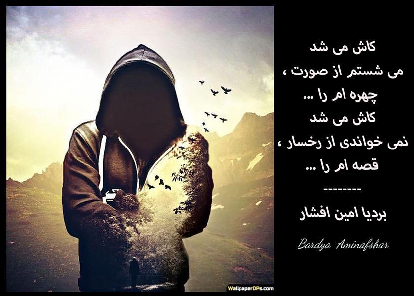 هنر شعر و داستان محفل شعر و داستان بردیا امین افشار #کاش_میشد #شعر_کوتاه #چامک #بردیا #امین_افشار