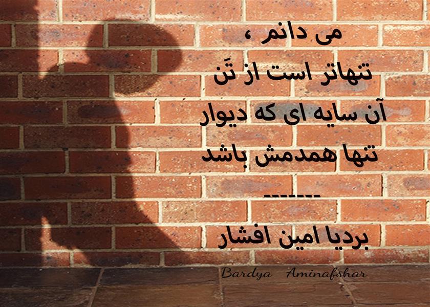 هنر شعر و داستان محفل شعر و داستان بردیا امین افشار #همدم #چامک #شعر_کوتاه #بردیا #امین_افشار