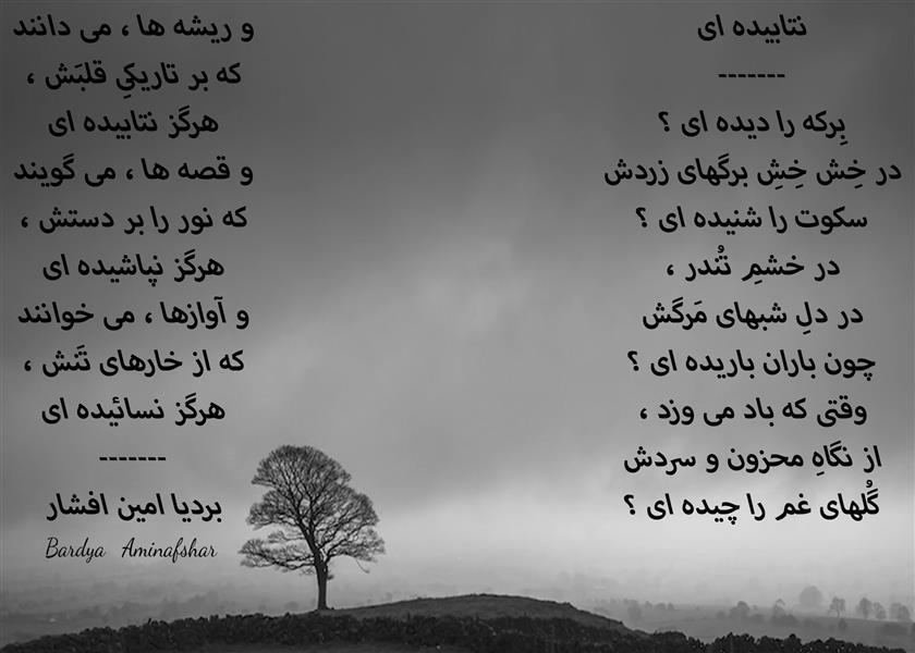 هنر شعر و داستان محفل شعر و داستان بردیا امین افشار #نتابیده_ای #شعر_سپید #بردیا #امین_افشار