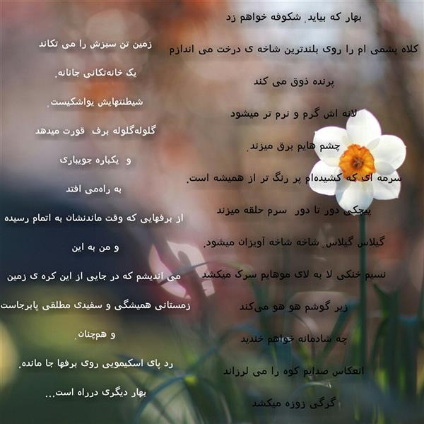 هنر شعر و داستان محفل شعر و داستان ghazal-heidari #بهار دیگری در راه است #غزال_حیدری