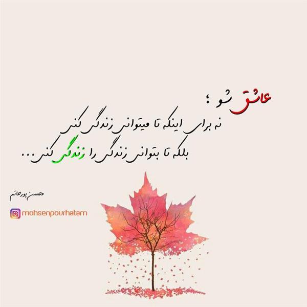 هنر شعر و داستان محفل شعر و داستان محسن پورحاتم متن کوتاه ادبی