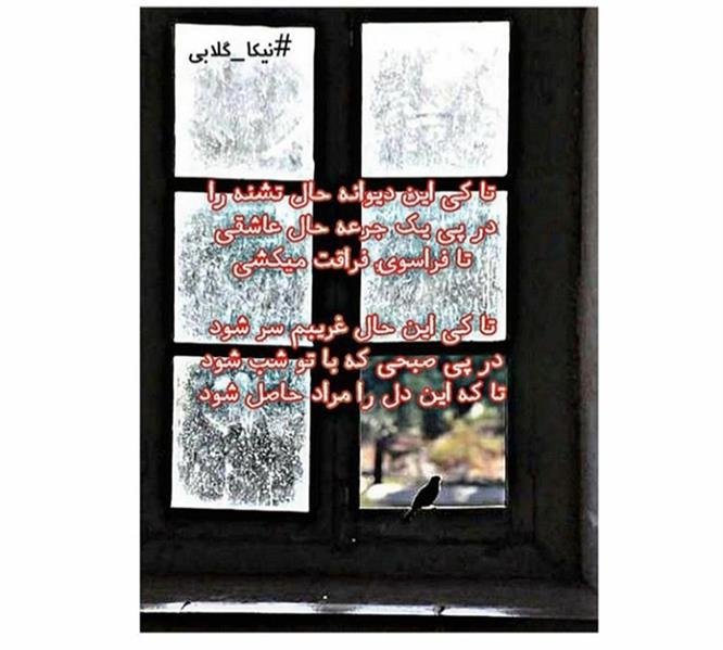 هنر شعر و داستان محفل شعر و داستان نیکا-گلابی نیکا نویس