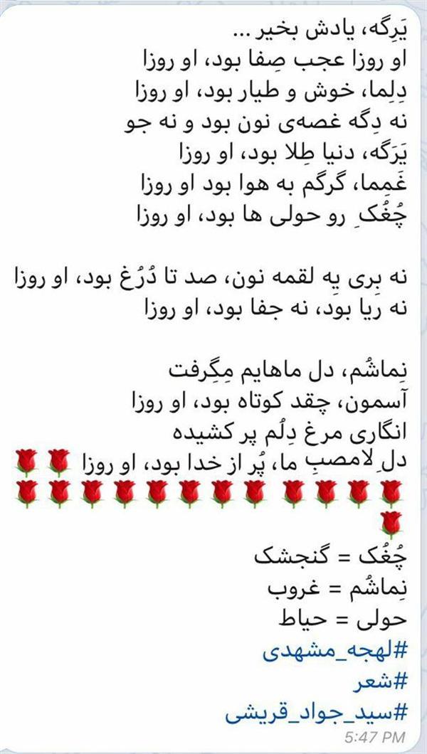 هنر شعر و داستان محفل شعر و داستان سید جواد قریشی شعری با لهجهی مشهدی
