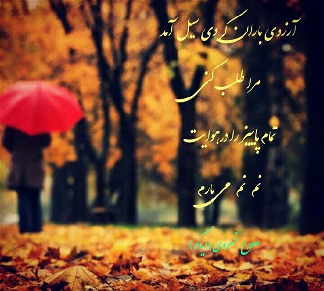 هنر شعر و داستان محفل شعر و داستان صلاح خسروی (دیاکو) پاییز و باران