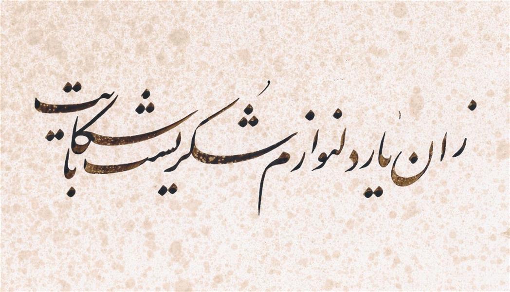 هنر خوشنویسی محفل خوشنویسی سید نصراله شاهرخی زان یار دلنوازم شکریست با شکایت ۳۰×۲۰