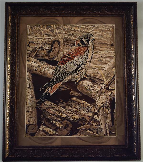 هنر سایر محفل سایر هنر ها حیدر خلیلی تابلو معرق چوب (شاهین) به همراه قاب با استفاده از انواع چوب