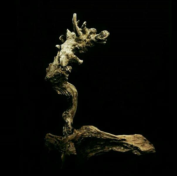 هنر سایر محفل سایر هنر ها اشکان ملک پور مجسمه سنگی  گوژپشت نتردام  #اشکان_ملک پور   Stone wood art  #stone_wood_art  ارتفاع ۵۰ cm طول ۴۶ cm عرض ۱۵ cm