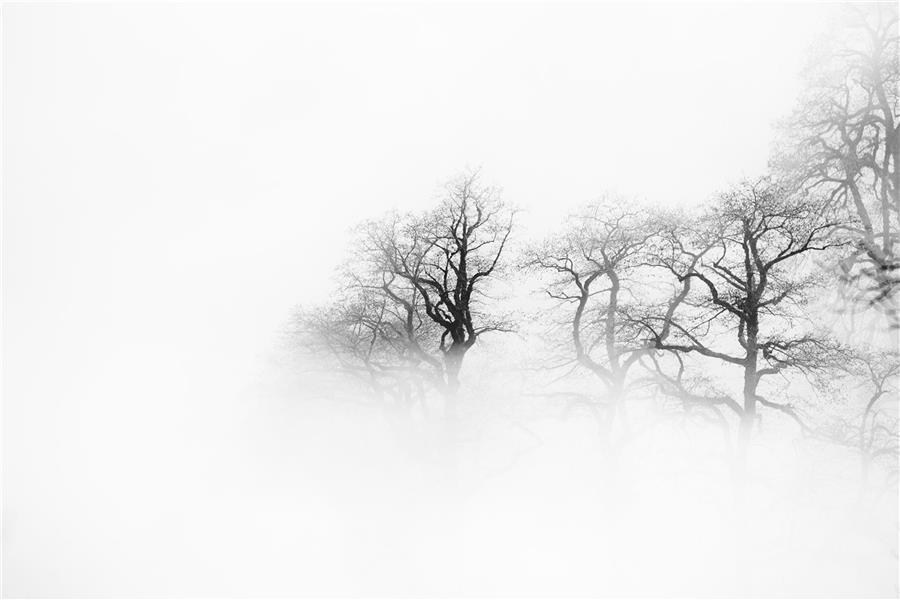 هنر عکاسی عکاسی مینیمال امیر سوکی