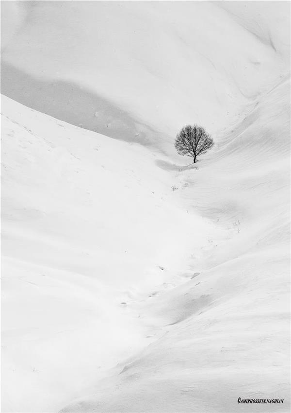 هنر عکاسی عکاسی مینیمال amirhossein naghian