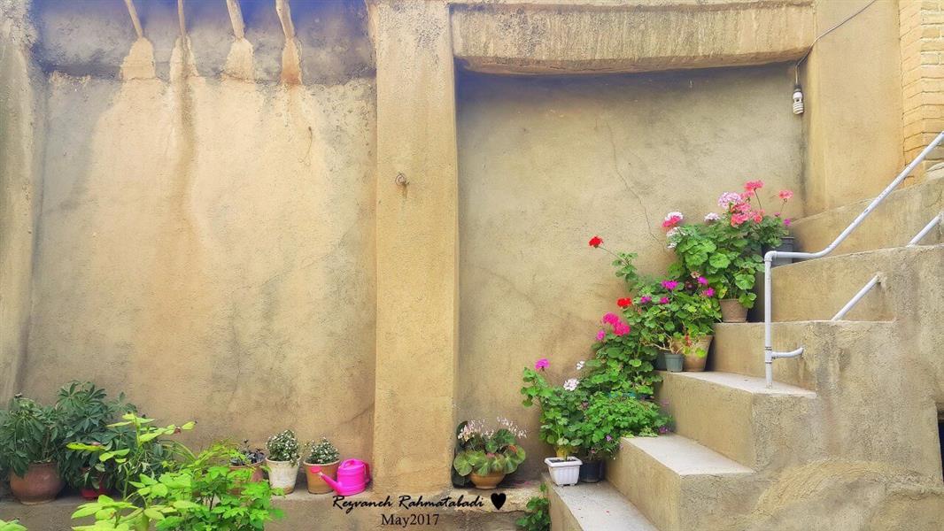 هنر عکاسی بهار Rezvaneh- Ra خانه ایی پر از انرژی مثبت