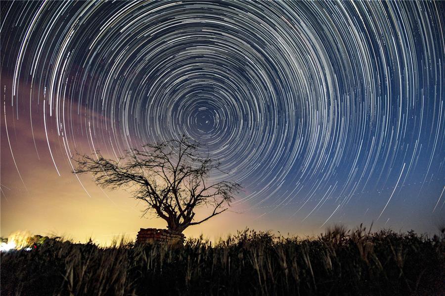 هنر عکاسی عکاسی در شب محمد صادق سمندی زاده این اثر (تک درخت) با تکنیک (استار تریل)در منطقه گرمسار ثبت گردیده و حدود 200 فریم شات 30 ثانیه هست در ایزو 1600 حدود 2:30 تاخیر نوردهی با عدد دیافراگم:2.8