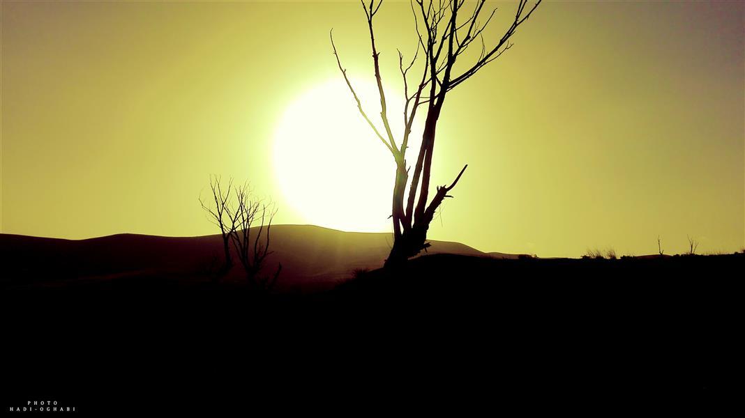 هنر عکاسی عکاسی لنداسکیپ منظره هادی عقابی هنر در طبیعت نهفته است و متعلق به کسی است که آن را از طبیعت استخراج کند. #منظره#طبیعت#عکاسی#غروب#زیبا#هنری#هنر_ایرانی#درخت#خورشید#هجران#آسمان