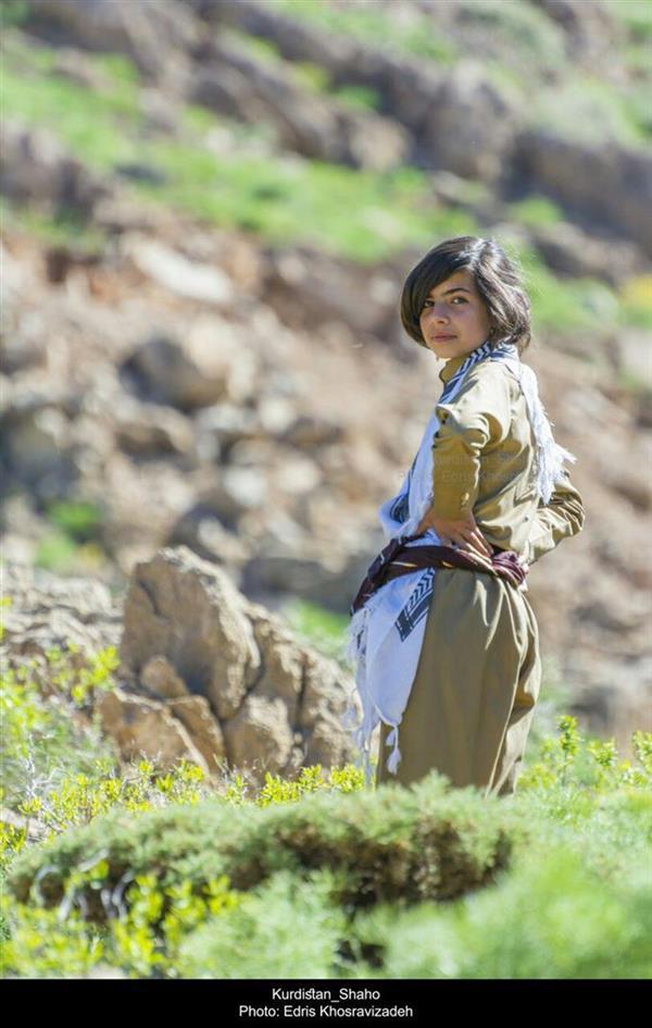 هنر عکاسی عکاسی فرهنگ ایرانی Edris Khosravizadeh لباس زیبای کوردی به تن دختر نوجوان کورد در طبیعت زیبا و بکر کوهستان شاهو