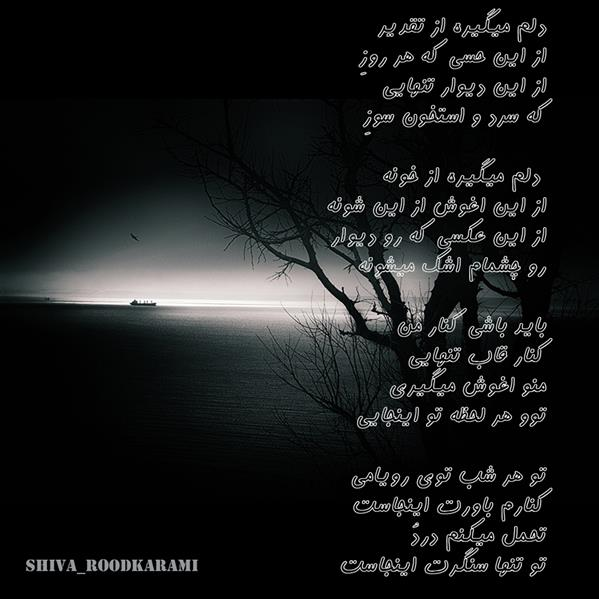 هنر شعر و داستان شعر عاشقانه shiva_roodkarami