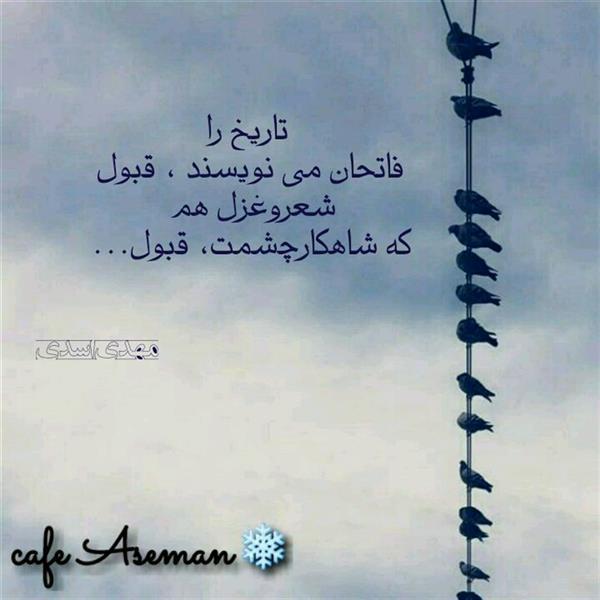 هنر شعر و داستان شعر عاشقانه مهدی اسدی تک بیت